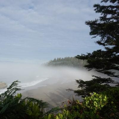 A misty beach
